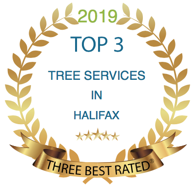 tree removal halifax
